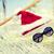 hamaca · ayudante · sombrero · vacaciones · Navidad - foto stock © dolgachov