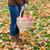 женщину · корзины · урожай · портрет · улыбаясь - Сток-фото © dolgachov