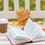 nyitott · könyv · kávéscsésze · pad · ősz · park · évszak - stock fotó © dolgachov