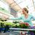 bevásárlókocsi · virágok · virágcsokor · színes · tulipánok · izolált - stock fotó © dolgachov