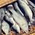 рыбы · продажи · рынке · Таиланд · продовольствие · природы - Сток-фото © dolgachov