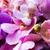 Purple · орхидеи · цветы · цветок · воды · свадьба - Сток-фото © dolgachov