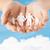 família · crianças · mãos · silhueta · água · mão - foto stock © dolgachov