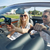 vrouw · gps · navigatie · vergadering · binnenkant · auto - stockfoto © dolgachov