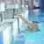 少年 · スイミングプール · ゴーグル · 青 · 肖像 - ストックフォト © dotshock