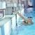 boldog · gyermek · úszómedence · jókedv · víz · lány - stock fotó © dotshock