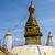 mono · templo · Nepal · edificio · puesta · de · sol · oro - foto stock © dutourdumonde