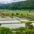 魚 · 池 · ファーム · 水産養殖 · 水 - ストックフォト © dutourdumonde