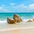 ola · grande · playa · California · EUA · agua - foto stock © dutourdumonde