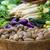 корзины · свежие · картофель · деревенский · зеленый - Сток-фото © dutourdumonde