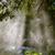 листьев · воды · спрей · солнце · свет · дизайна - Сток-фото © dutourdumonde