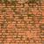 石膏 · 壁 · 具体的な · 穀物 - ストックフォト © dutourdumonde