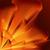 oranje · vlaggen · opknoping · buiten · blauwe · hemel · gebruikt - stockfoto © dvarg