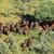 african buffalo herd stock photo © ecopic