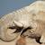 afrika · fil · kapalı · çamur · büyük · boğa · park - stok fotoğraf © ecopic