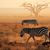 plains zebras in dust stock photo © ecopic