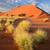 desert landscape stock photo © ecopic