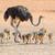 ostrich with chicks stock photo © ecopic
