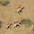 corrida · girafas · África · do · Sul · parque · animal - foto stock © ecopic