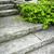 pietra · scale · paesaggistica · naturale · home · giardino - foto d'archivio © elenaphoto