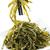 alga · salada · popular · delicioso · comida · japonesa · aperitivo - foto stock © elenaphoto