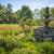 belle · concrètes · luxuriante · herbe · verte - photo stock © elenaphoto