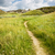 nyom · park · Dél-Dakota · USA · tájkép · zöld - stock fotó © elenaphoto