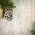 Рождества · украшения · филиала · соснового - Сток-фото © elenaphoto