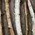 huş · ağacı · ağaç · havlama · doku · güzel · doğal - stok fotoğraf © elenaphoto