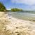 Coast of Pacific ocean, Vancouver Island, Canada stock photo © elenaphoto