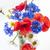 букет · стекла · ваза · изолированный · белый · цветок - Сток-фото © elenaphoto