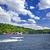 Canada · oie · décollage · rivière - photo stock © elenaphoto