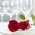 romantica · ristorante · cena · tavola · due · rose - foto d'archivio © elenaphoto
