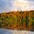 düşmek · orman · yansımalar · renkli · sonbahar · ağaçlar - stok fotoğraf © elenaphoto