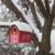 красочный · птица · дома · небе · цветок · текстуры - Сток-фото © elenaphoto