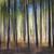 ahşap · çam · ağaçlar · sanayi - stok fotoğraf © elenaphoto