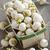 basket of small turnips stock photo © elenaphoto