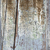 old painted distressed wood background stock photo © elenaphoto