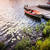 jezioro · brzegu · ontario · Kanada · dwa - zdjęcia stock © elenaphoto