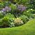 いかがわしい · 庭園 · 豊かな · 緑 · 夏 · 多年生植物 - ストックフォト © elenaphoto