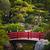 red bridge in japanese garden stock photo © elenaphoto