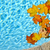 Fall leaves floating in pool stock photo © elenaphoto