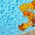 caída · hojas · piscina · piscina · agua - foto stock © elenaphoto