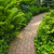 Brick path in landscaped garden stock photo © elenaphoto