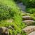 garden path with stone landscaping stock photo © elenaphoto