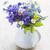 Purple · Полевые · цветы · три · крошечный · тропические · цветок - Сток-фото © elenaphoto