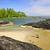 мнение · Ванкувер · воды · панорамный · город · парка - Сток-фото © elenaphoto