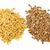 marrom · dourado · semente · isolado · branco · saúde - foto stock © elenaphoto