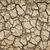 высушите · треснувший · почвы · озеро · трава · природы - Сток-фото © elenaphoto