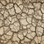 secar · rachado · terreno · seca · solo · sujeira - foto stock © elenaphoto